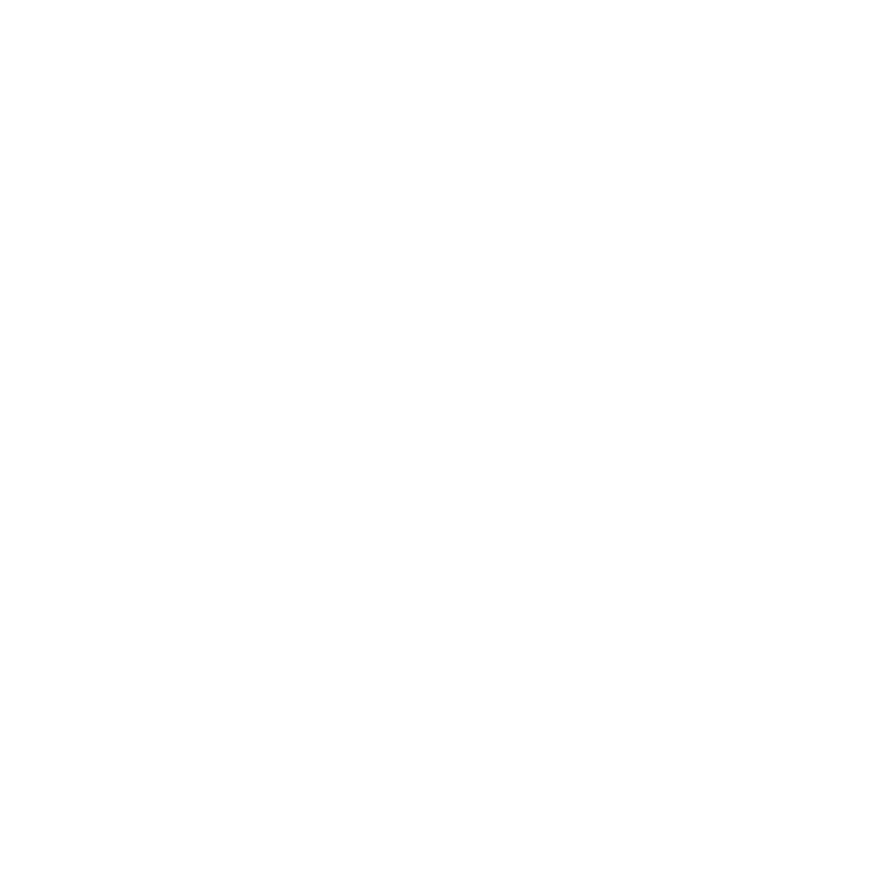 Wetiz Lifesaving Logo